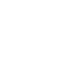 white Instagram logo