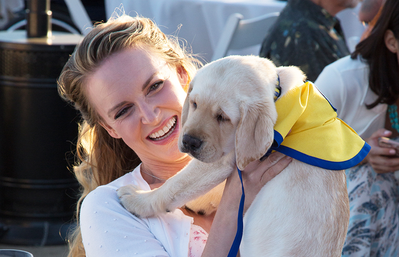 Mingling with Canine Companions assistance dogs and puppies